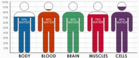boire de l'eau maigrir perdre le poids