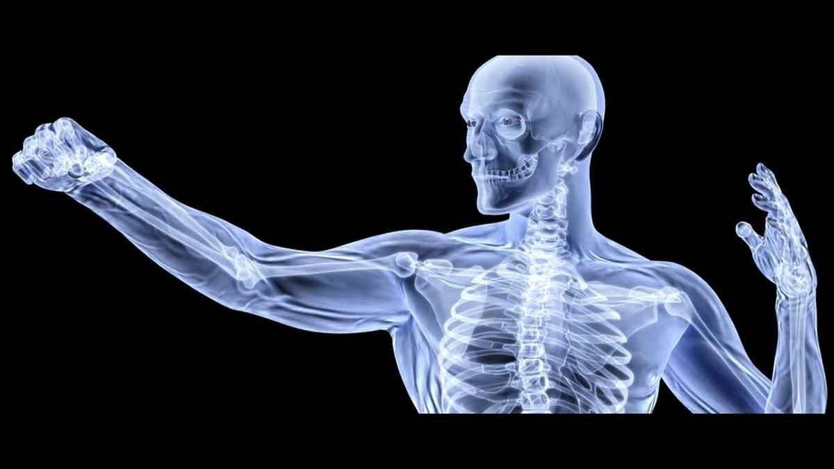 acidité corps os calcium