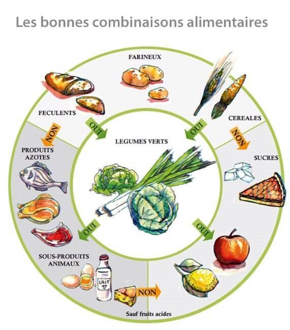 combinaison alimentaire digestion nutriments environnement