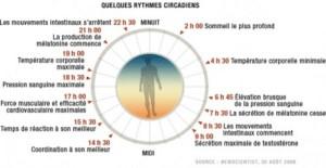 rythme circadien sommeil système déclenche