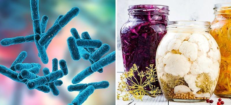 Probiotiques Bénéfices